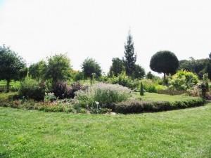 07.09.2013 Wycieczka - Arboretum w Wojsławicach